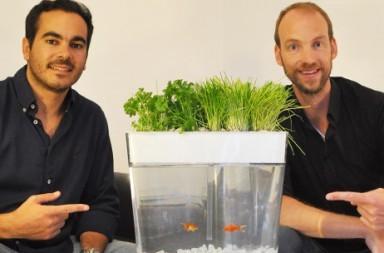 Ecofarm Kickstarter